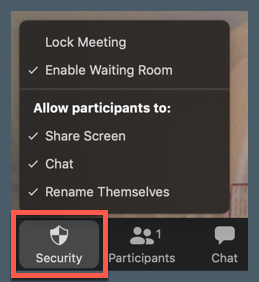 screenshot of security tab in Zoom